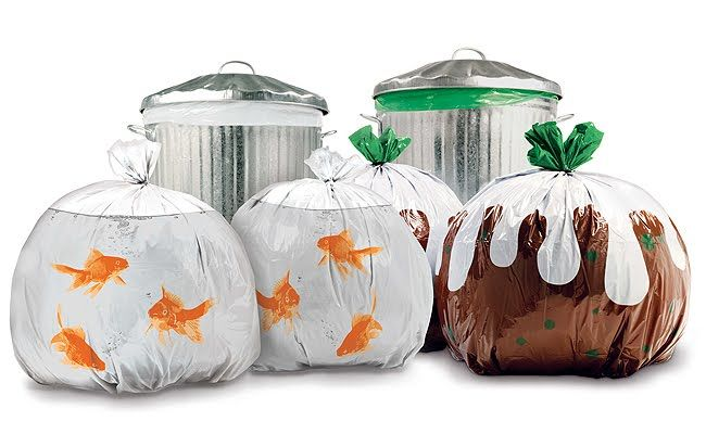 پلاستیک زباله نانو